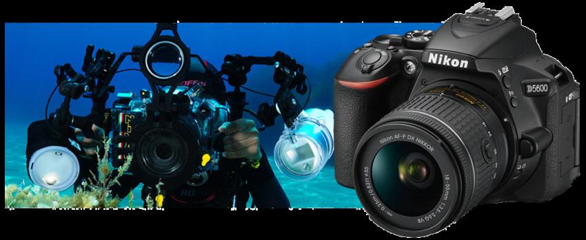 Copertina del nuovo eXperience Nikon D5600